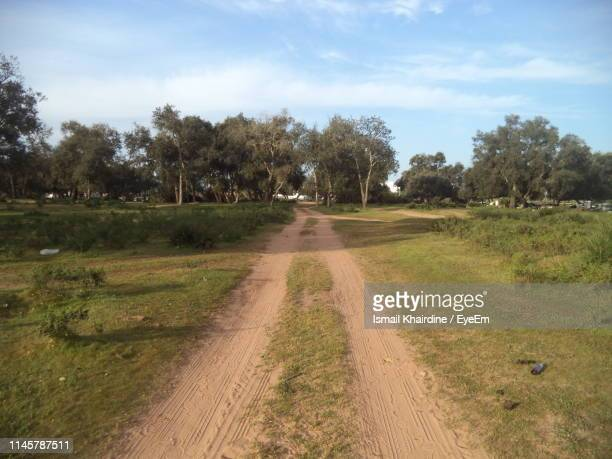 dirt road amidst trees on field against sky - ismail khairdine stock photos and pictures