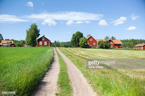 dirt road and wooden cottages - レクサンド ストックフォトと画像
