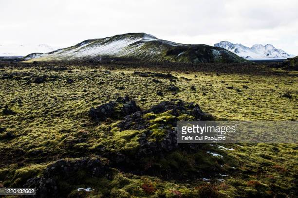 dirt road at hvannagil canyon, eastern iceland - lava plain stock pictures, royalty-free photos & images
