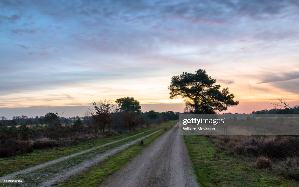 Dirt Road Bend : Stockfoto