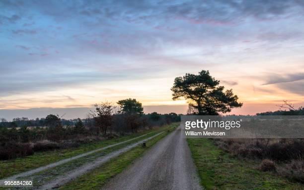 dirt road bend - william mevissen bildbanksfoton och bilder