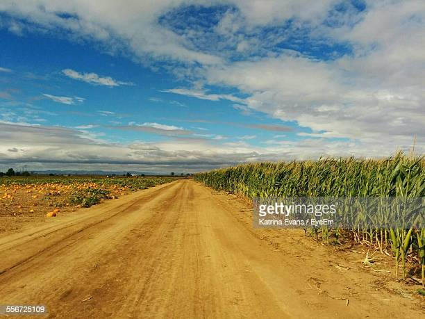 dirt road by corn field against cloudy sky - santa clarita stock pictures, royalty-free photos & images