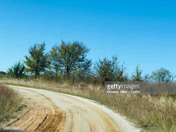 dirt road by trees against clear blue sky - rowena miller stock pictures, royalty-free photos & images