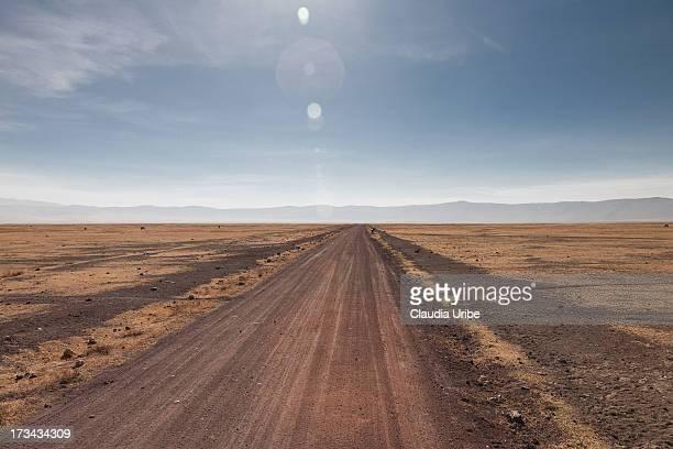 Dirt road - diminishing perspective.