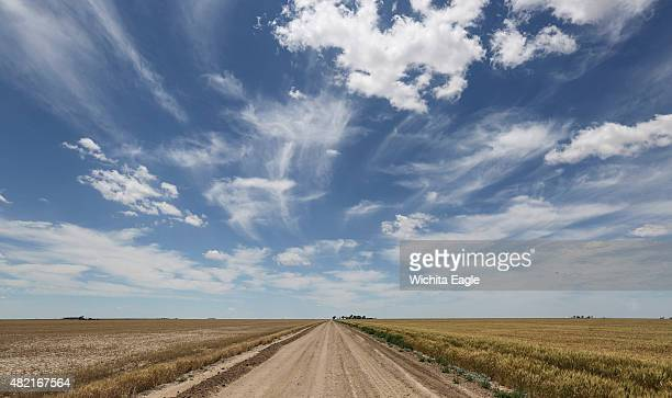 A dirt road divides two wheat fields in Grant County Kansas The field on the right benefits from irrigation courtesy of the Ogallala aquifer that...