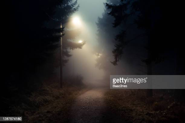 dirt road in a dark and foggy forest - low stock pictures, royalty-free photos & images