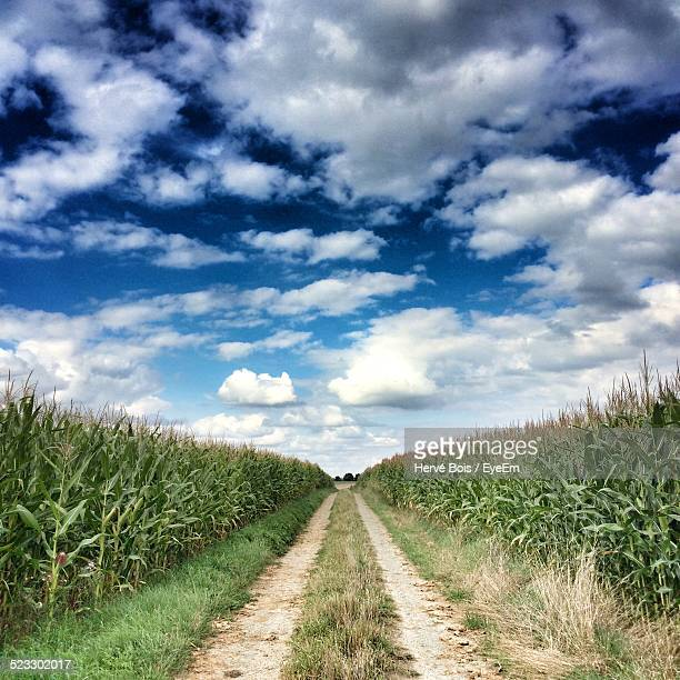 Dirt Road In Agricultural Field Against Sky