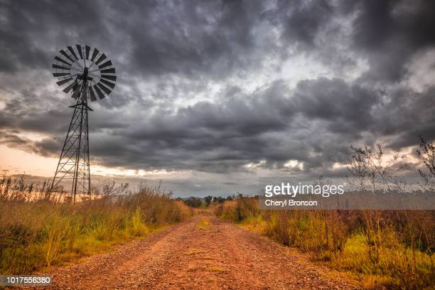 dirt road in rural australia from low perspective - queensland stock-fotos und bilder