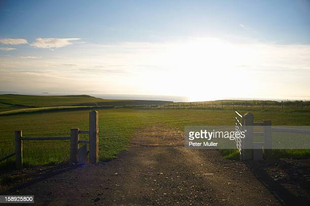 dirt road in rural field - northern ireland stock photos and pictures