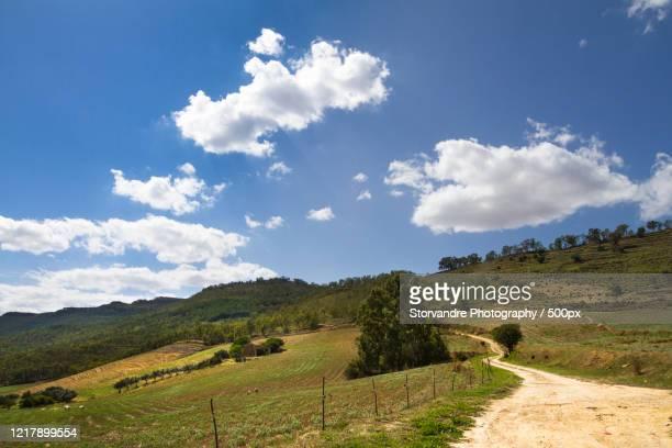 dirt road in rural landscape, san michele di ganzaria, sicily, italy - strada di campagna foto e immagini stock