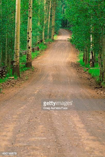 dirt road in zion national park - public domain stock pictures, royalty-free photos & images