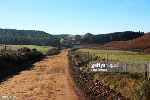 Dirt road on the farms of Brazil.