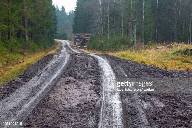 dirt road passing through forest - mud stock pictures, royalty-free photos & images