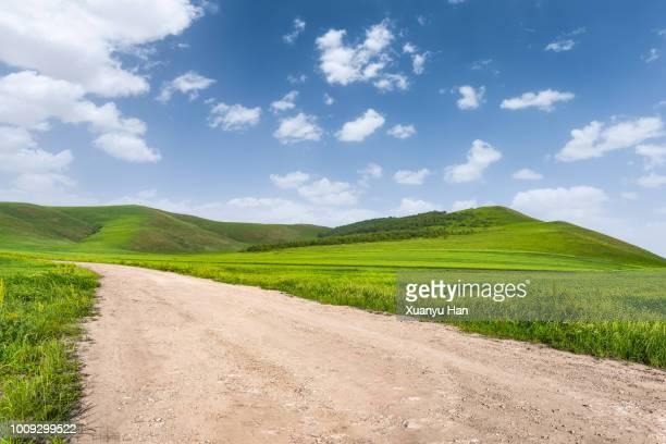 dirt road - pianura foto e immagini stock