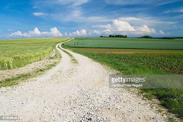 Dirt road through beautiful countryside