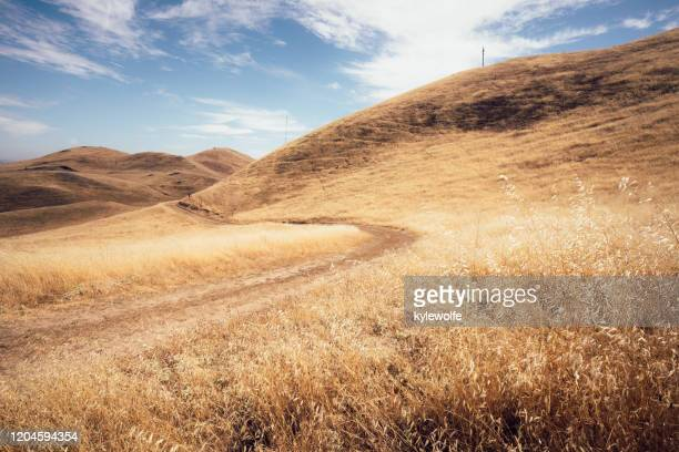 dirt road through grass covered hills, mission peak regional preserve, fremont, california, usa - fremont california stock pictures, royalty-free photos & images