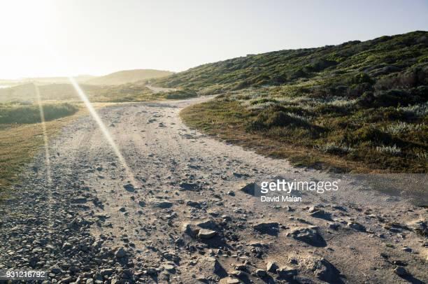 Dirt road through grasslands.