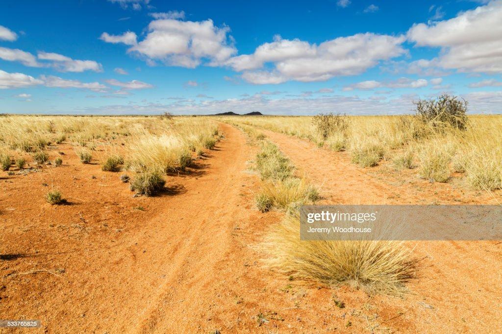 Dirt road under blue sky in desert landscape : Foto stock