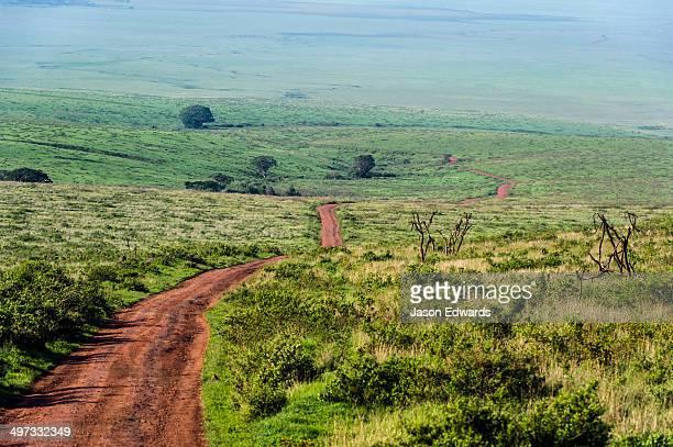 A dirt road winds through the vast savannah plain at the foot of a volcano caldera.
