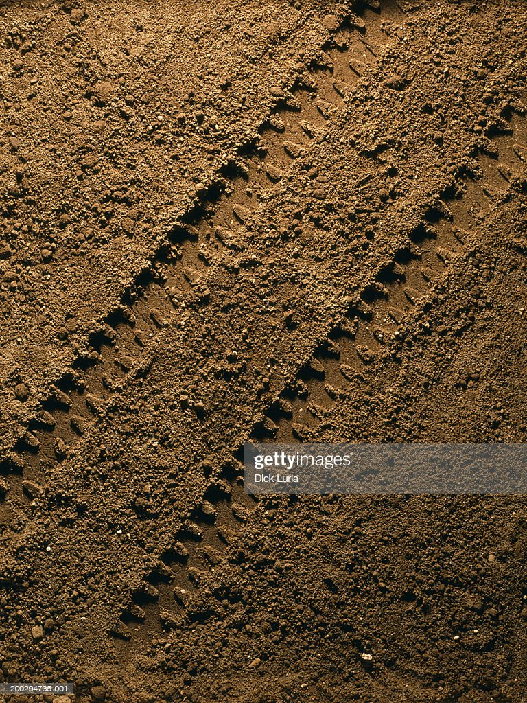 dirt road with tire tracks : Stock Photo