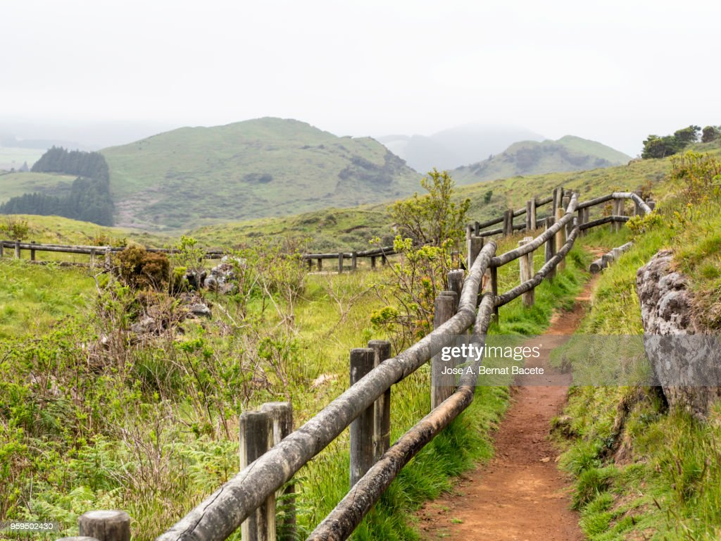 Dirt track and green grass with a handrail of trunks of wood to walk along the field of the Terceira Island in the Azores, Portugal. : Stock-Foto