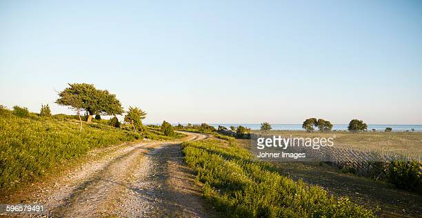 dirt track at sea - faro sweden stock pictures, royalty-free photos & images
