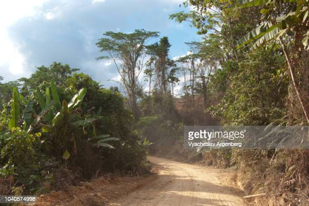 dirt track in the middle of palawan island wilderness, philippines - argenberg stock pictures, royalty-free photos & images