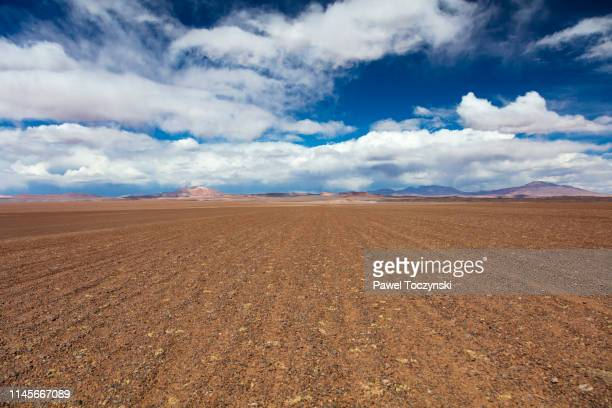 dirt track leading to the salar de tara salt flat, located 4,300m altitude in los flamencos national reserve at the atacama desert, chile, january 18, 2018 - pebble stock pictures, royalty-free photos & images