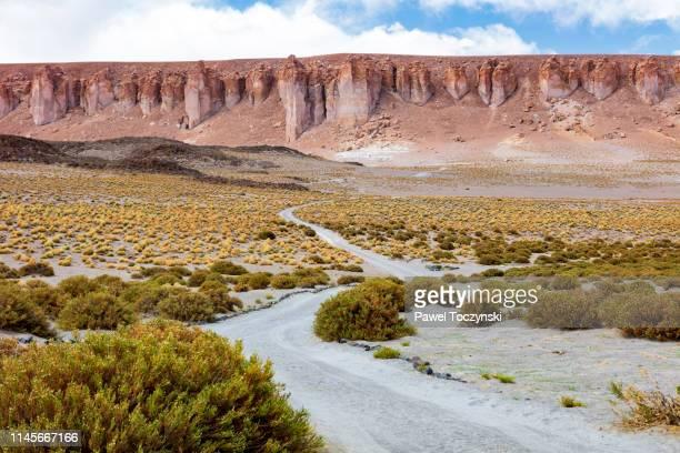 dirt track leading to the salar de tara salt flat, located 4,300m altitude in los flamencos national reserve at the atacama desert, chile, january 18, 2018 - américa del sur fotografías e imágenes de stock