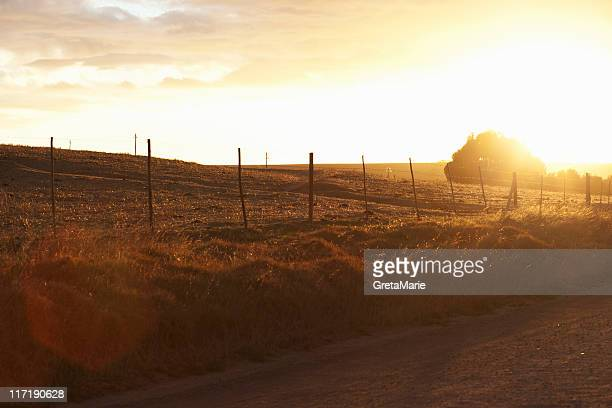 dirtroad at sunset with field - greta stock photos and pictures
