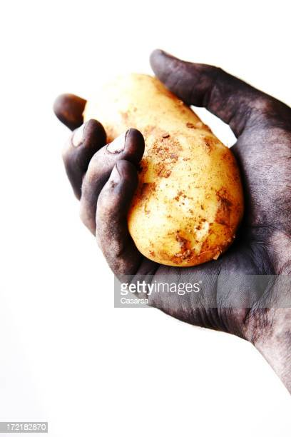 dirty hand - irish potato famine stock pictures, royalty-free photos & images