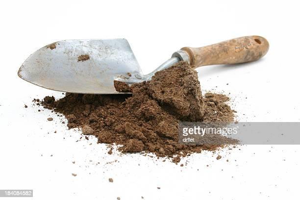 Dirty Spade (4