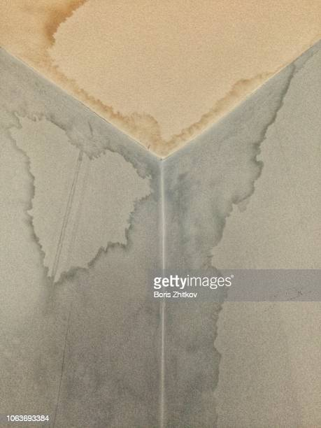 Dirty stains on ceiling and wall.