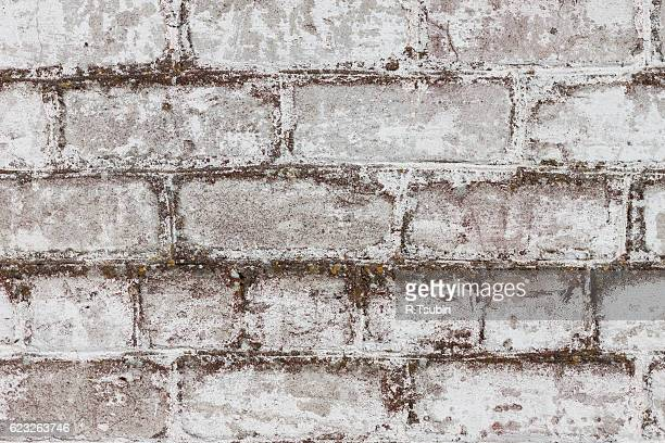 dirty wall background texture