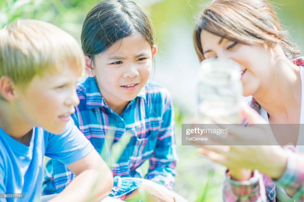 Dirty Water : Stock Photo