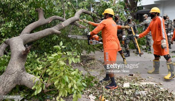 Disaster management team along with Army personnel clear the streets of uprooted trees after Cyclone Amphan at Southern Avenueon May 24 2020 in...