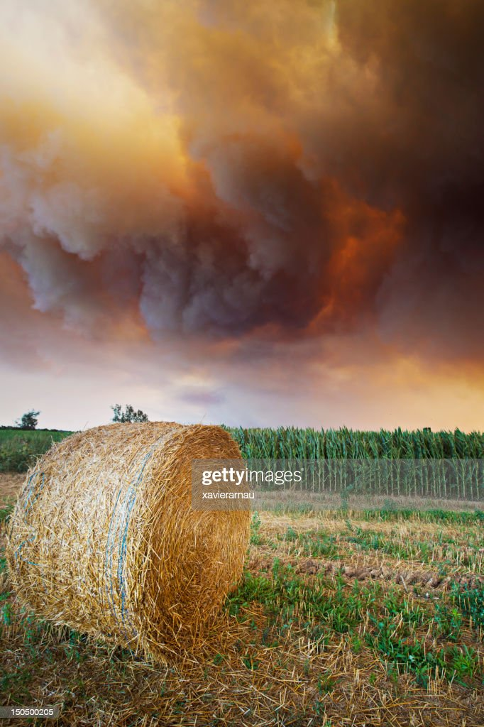 Disaster over the fields : Bildbanksbilder