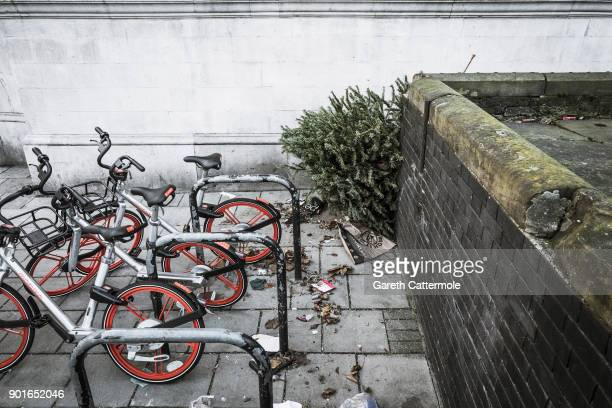 A discarded Christmas tree lies behind a wall in Angel on January 5 2018 in London England In the lead up to Christmas a pine tree is the centre...