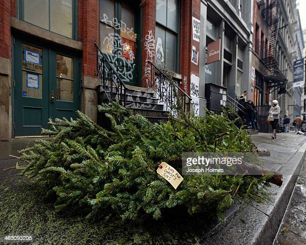 "Discarded Christmas tree on Mercer Street in New York City bears a tag reading ""I died for Christ's sins,"" either a trenchant commentary on religious..."
