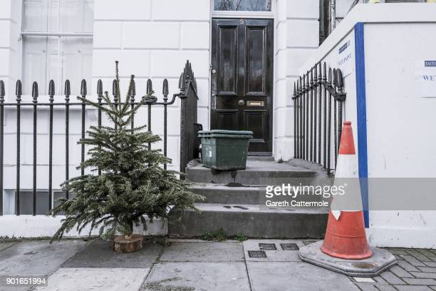 A discarded Christmas tree stands in a street in Angel on January 5 2018 in London England In the lead up to Christmas a pine tree is the centre...