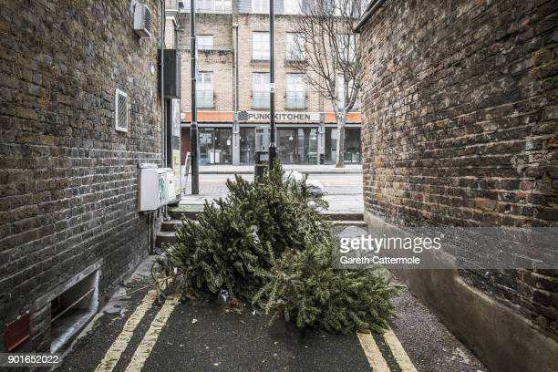Discarded Christmas trees lie in a side street in Angel on January 5 2018 in London England In the lead up to Christmas a pine tree is the centre...