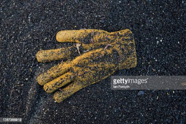 A discarded glove washed up by the tide is covered in sea coal deposited on Saltburn beach on November 24 2020 in Saltburn By The Sea England Sea...