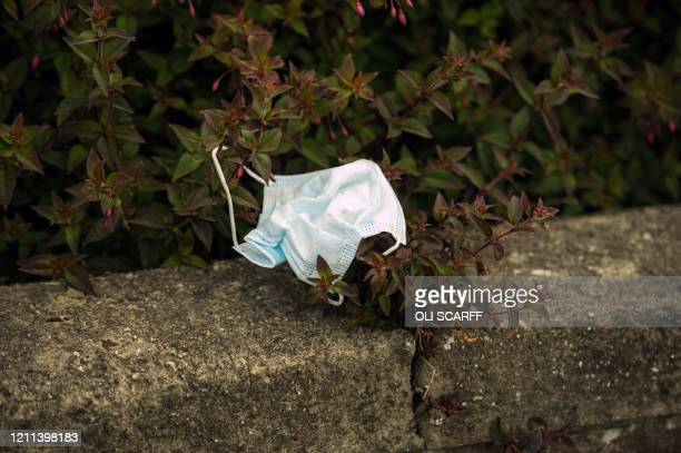 A discarded PPE face mask is pictured littered in a hedgerow in Whitley Bay north east England on April 30 as life in Britain continues during the...