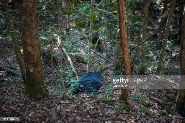 A discarded umbrella lies in Aokigahara forest on March 13 2018 in Fujikawaguchiko Japan Aokigahara forest lies on the on the northwestern flank of...