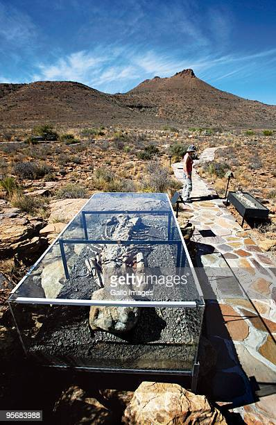 Discover a treasure trove in the Great Karoo The Karoo National Park proclaimed in 1979 this park is like a giant outdoor museum On the Fossil Trail...