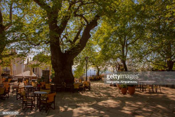 discovering greece - pelion - pelion stock pictures, royalty-free photos & images