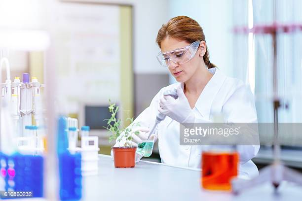 Discovering mutation in plant DNA in laboratory by female scientist