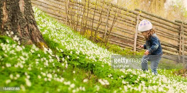 Entdecken Sie im Frühling