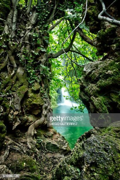 discovering the waterfall - riachuelo fotografías e imágenes de stock