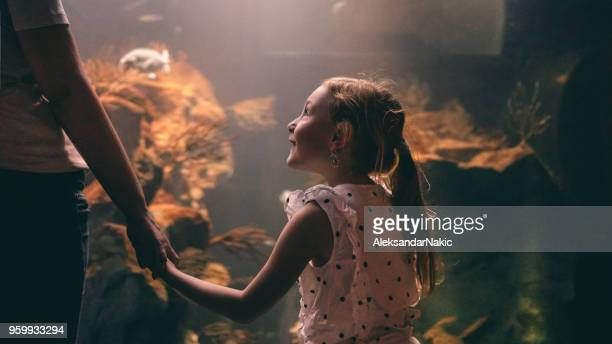 discovering underwater world with my mom - daughters of darkness stock pictures, royalty-free photos & images